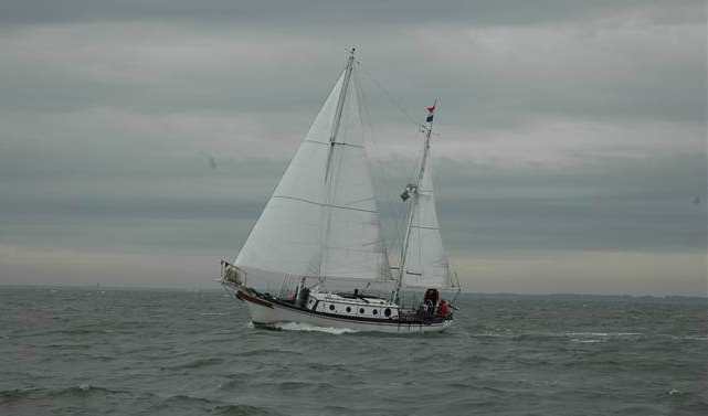 Seadog under sail